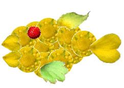ヘビイチゴ作り魚.jpg
